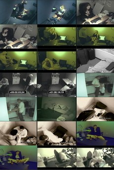Security Cam Chronicles 4