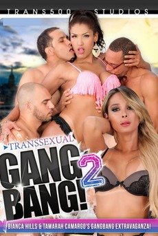 Transsexual Gang Bang! 2
